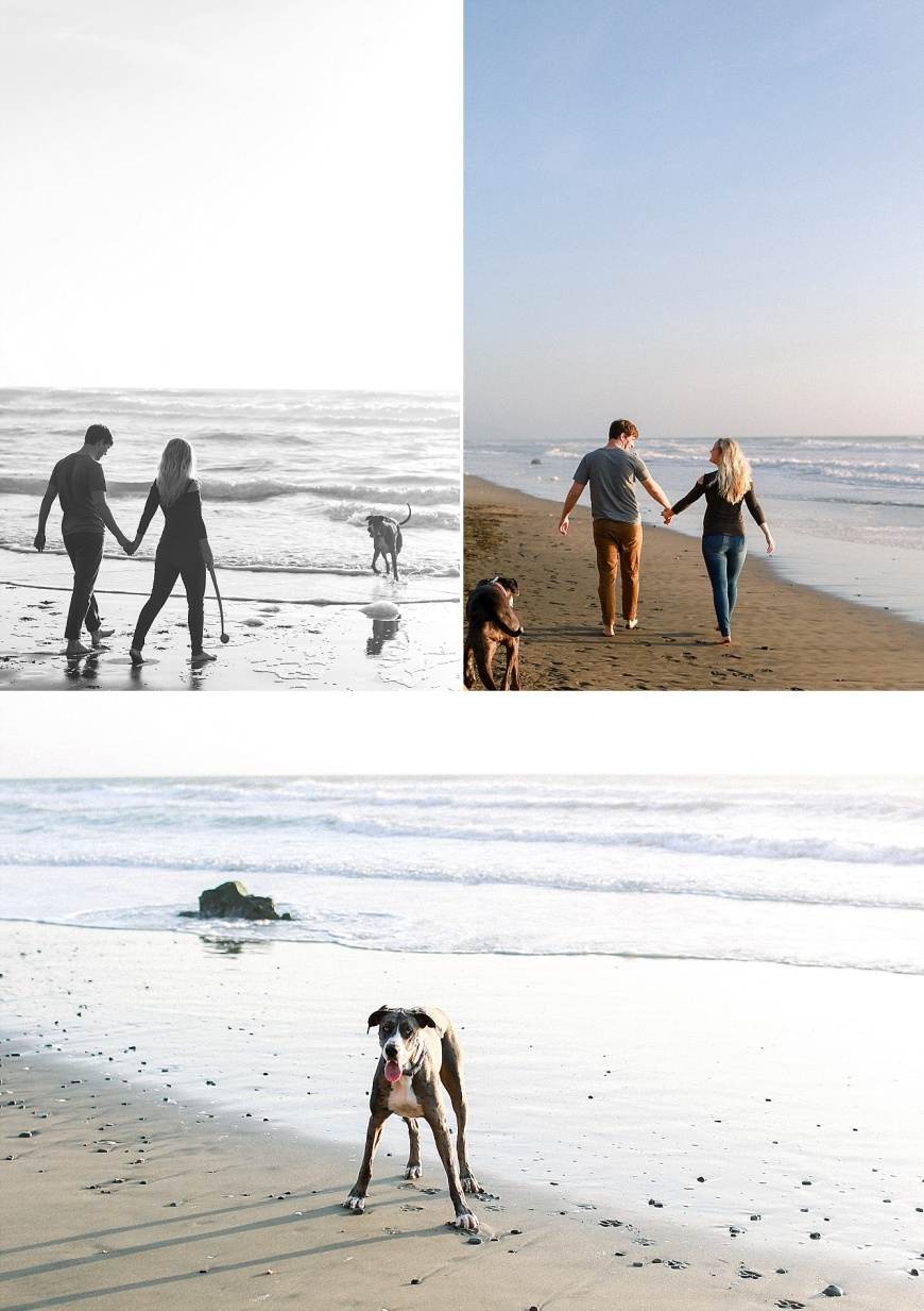 San-Francisco-Engagement-Photographer-Stern-Grove-Fort-Funston_1028.jpg