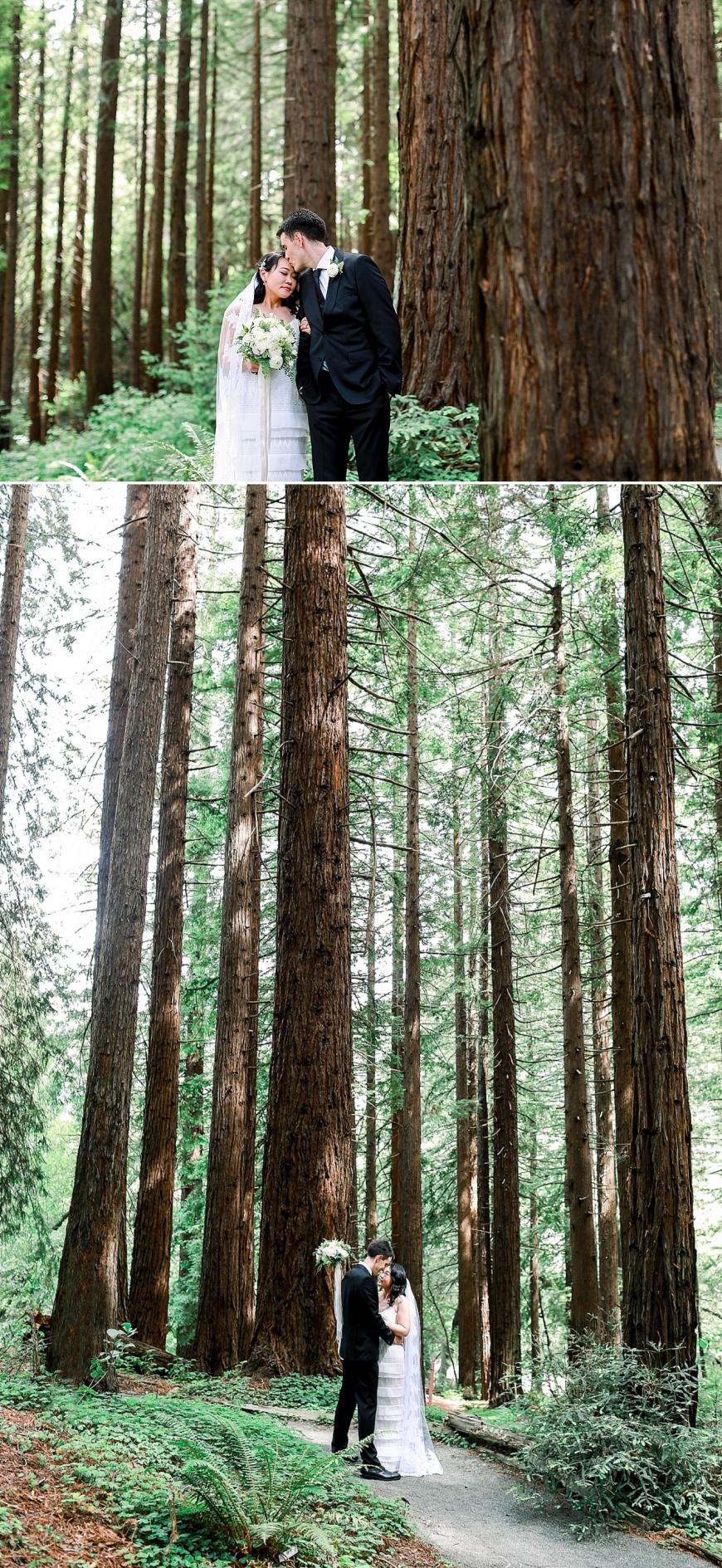 UC-Botanical-Garden-Berkeley-Wedding-Photographer_1025.jpg
