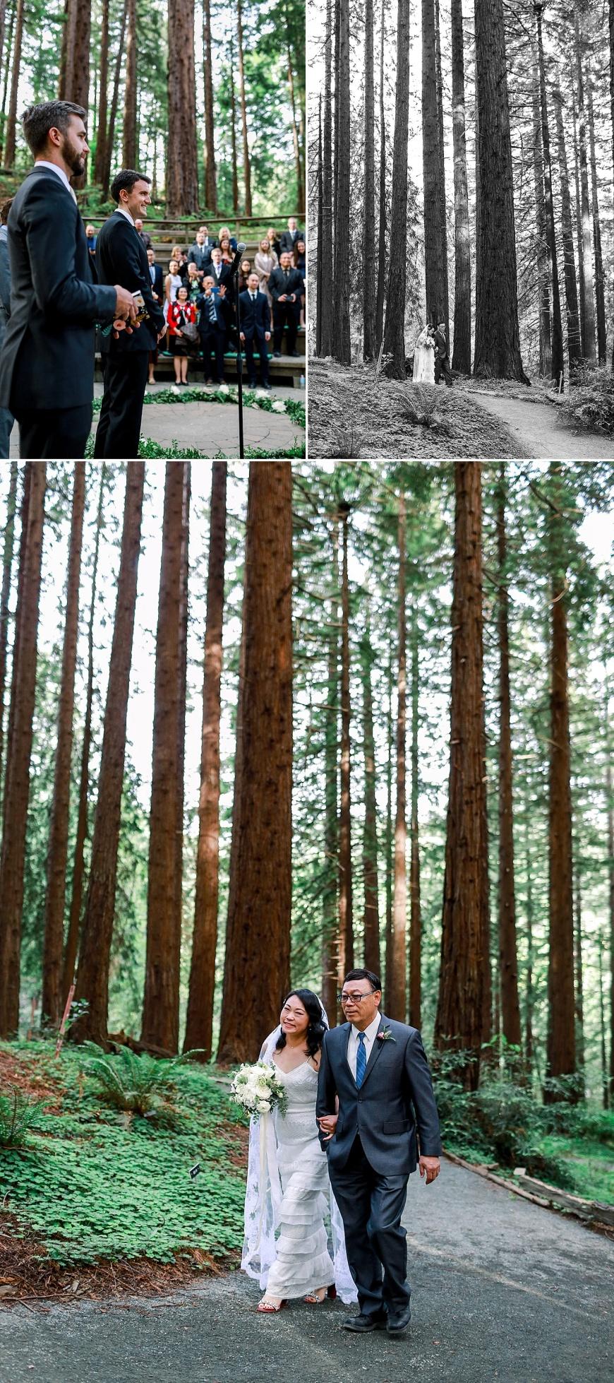 UC-Botanical-Garden-Berkeley-Wedding-Photographer_1046.jpg