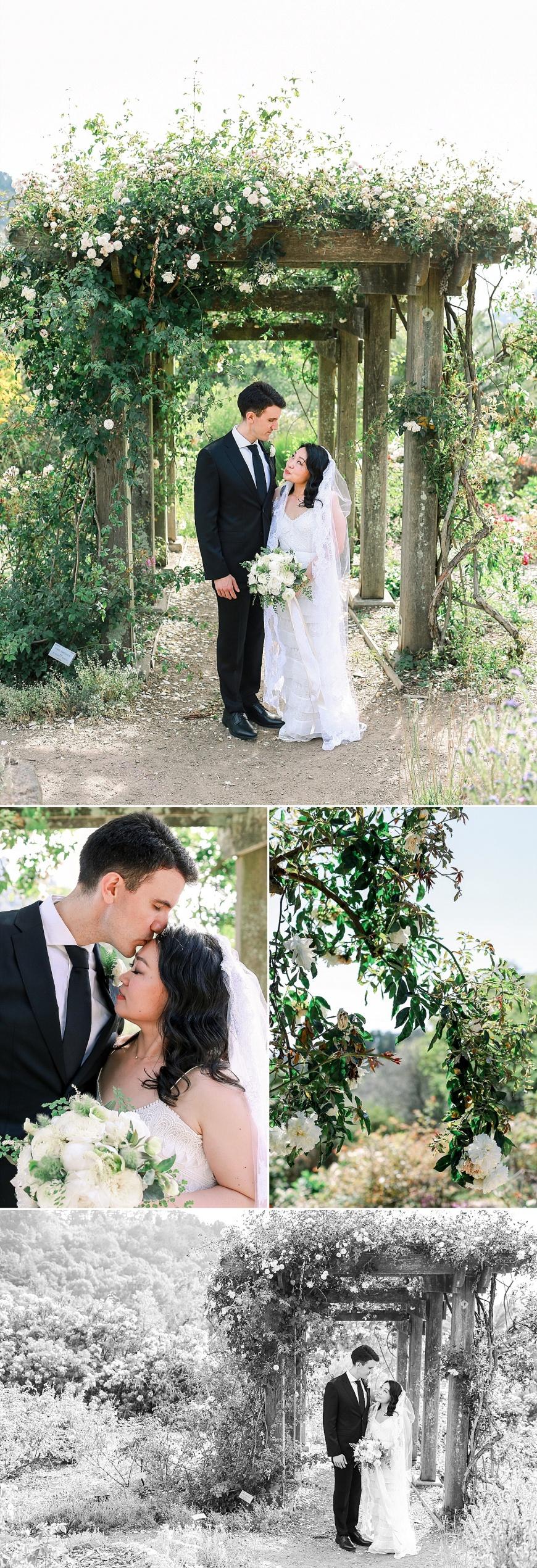 UC-Botanical-Garden-Berkeley-Wedding-Photographer_1056.jpg