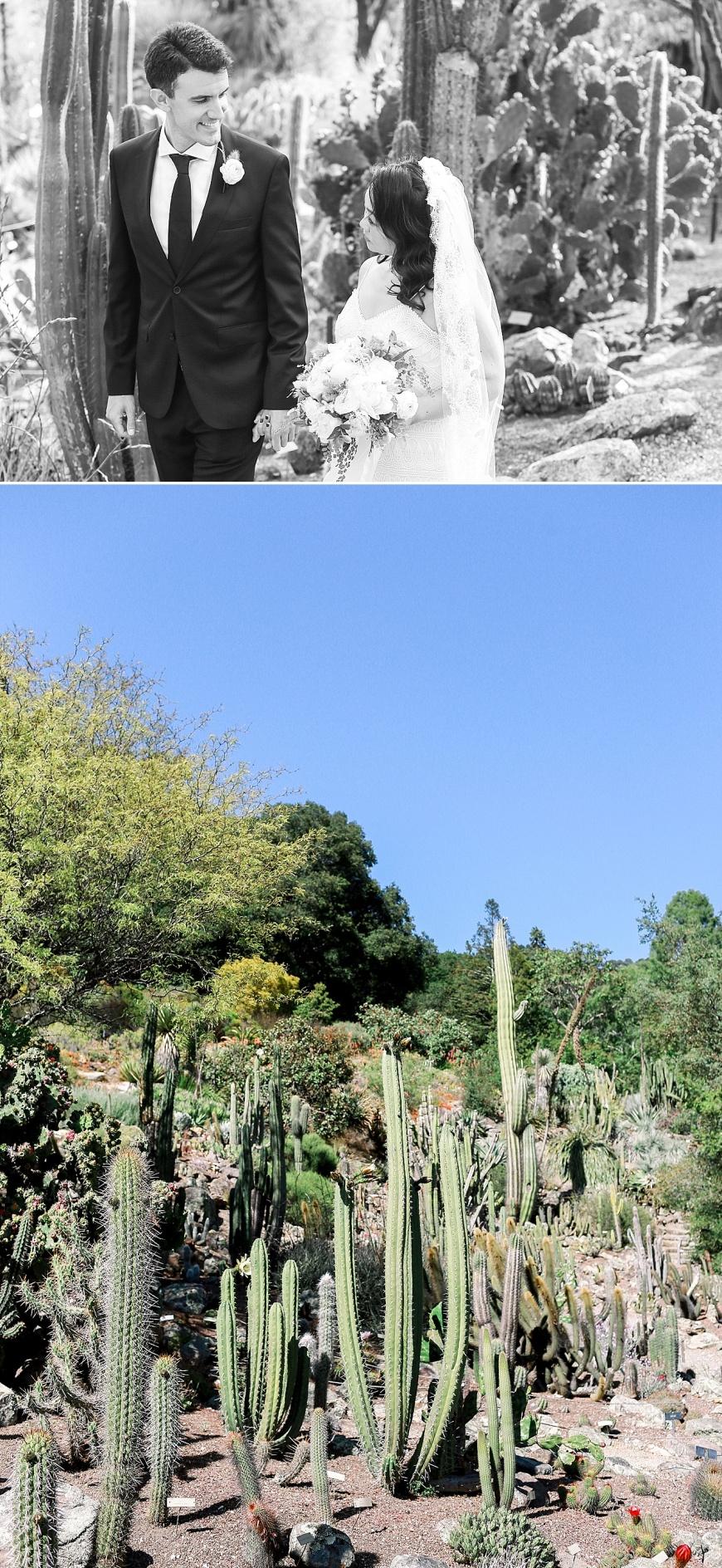 UC-Botanical-Garden-Berkeley-Wedding-Photographer_1062.jpg